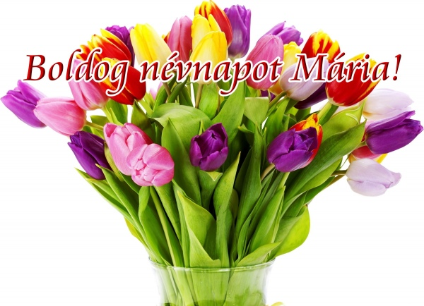 Boldog n vnapot m ria megaport media - Bunch of roses hd images ...