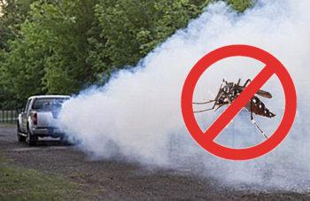 Szúnyogirtás